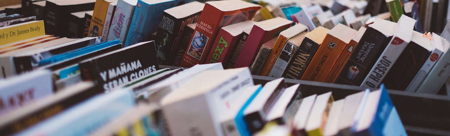 Should You Choose a Small Press Publisher?