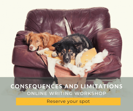 Join our online consequences and limitations workshop